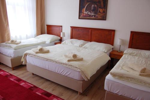 Postel nebo postele na pokoji v ubytování Hotel Aurelius Mikulov