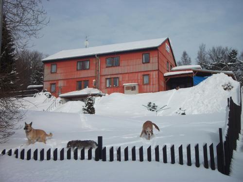 Chata Alžběta during the winter