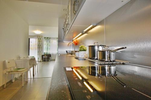 Кухня или мини-кухня в Nice and refreshing flat in Prague