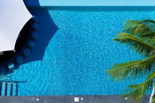 Piscina en o cerca de Coral Princess Golf & Dive Resort