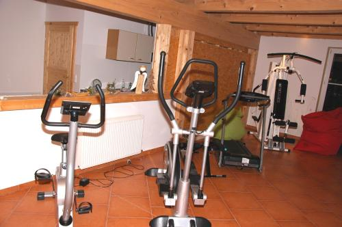 Das Fitnesscenter und/oder die Fitnesseinrichtungen in der Unterkunft Biohof Ebenbauer