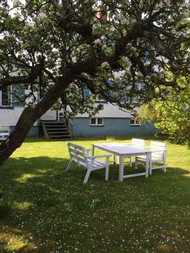 En trädgård utanför Borgholm Rum Centralt