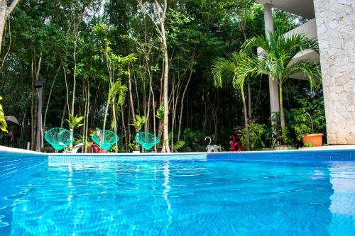 The swimming pool at or near Condo Hotel El Vivero Tulum