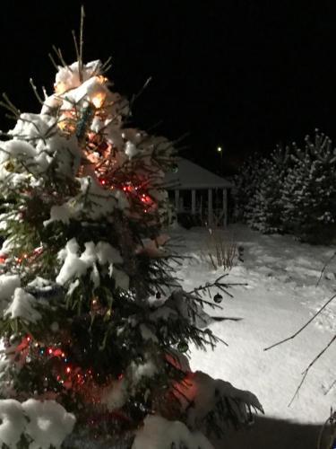 Гостевой Дом Улейма зимой