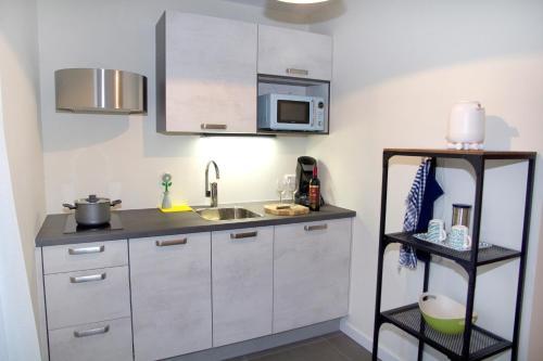 A kitchen or kitchenette at Studio-Vrij
