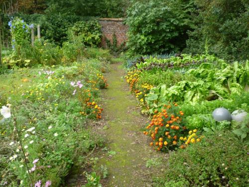 A garden outside au vieux cèdre