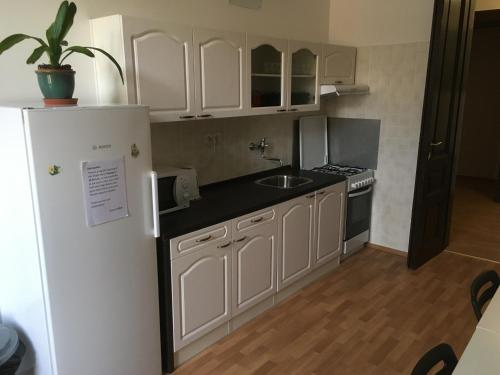 Кухня или мини-кухня в Hostel EMMA