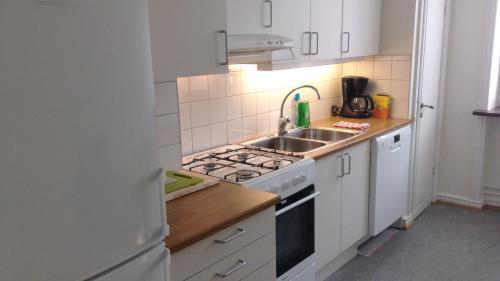 A kitchen or kitchenette at Cityroom & Apartments Triangeln