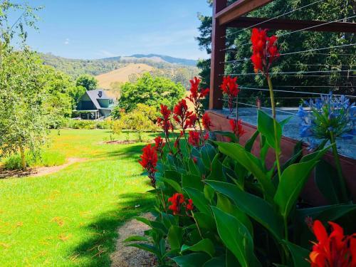 A garden outside Carawah Ridge