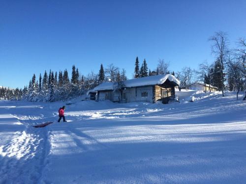 Arctic Paradise en invierno