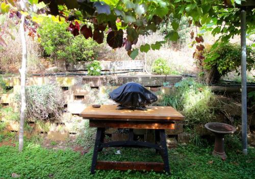 A garden outside Bushy Park Retreat