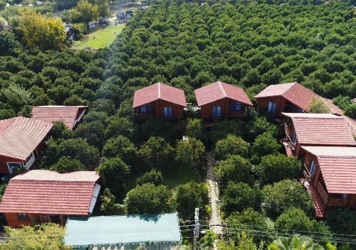 A bird's-eye view of Bahçe Villa