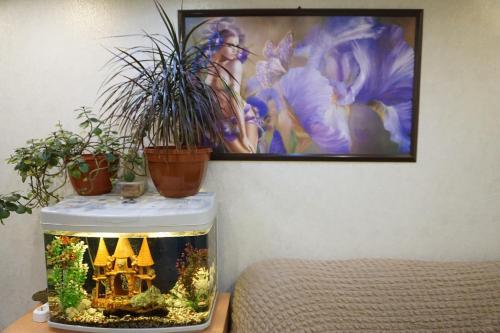 Телевизор и/или развлекательный центр в Отель Выставка