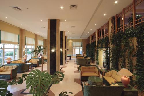 منطقة الاستقبال أو اللوبي في فندق سى جاردن