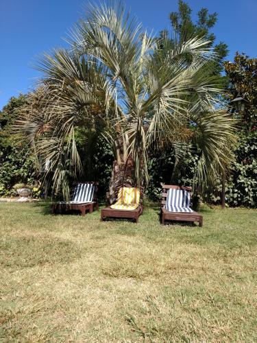 A garden outside Ayres de Vistalba