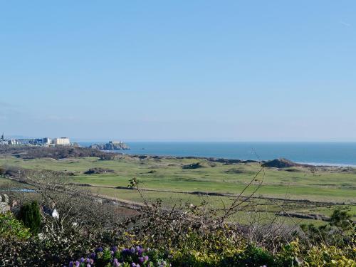 Caldey Island View