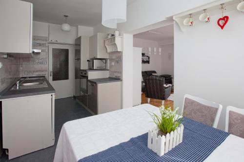 A kitchen or kitchenette at Apartment Macho