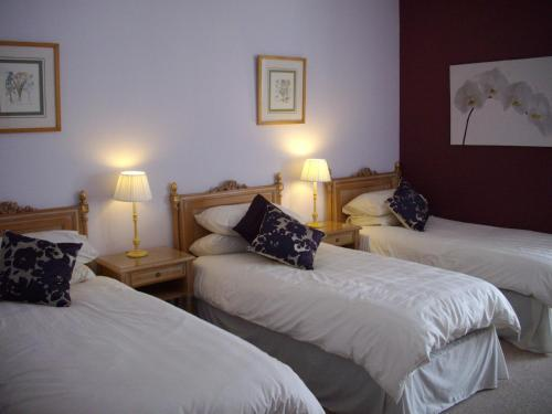 A bed or beds in a room at Dynevor Arms