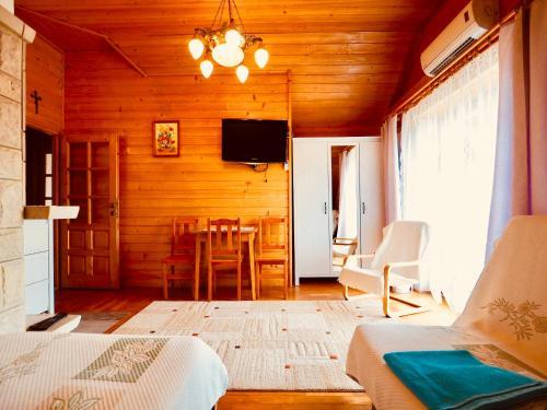 Telewizja i/lub zestaw kina domowego w obiekcie Apartament w Pieninach