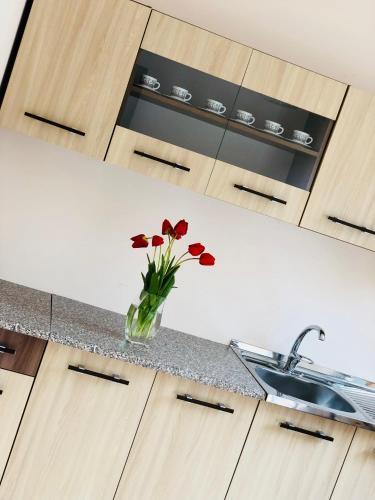 Кухня или мини-кухня в Guest house Stalin