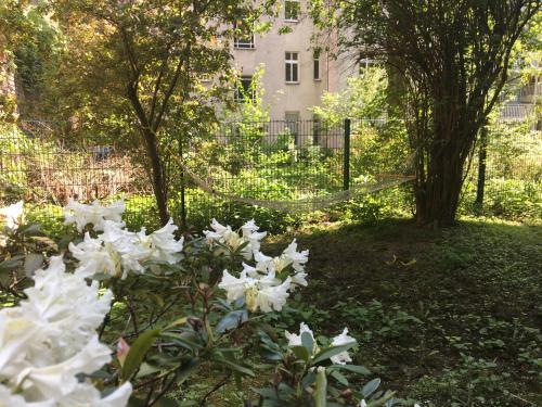 Ein Garten an der Unterkunft U inn Berlin Hostel