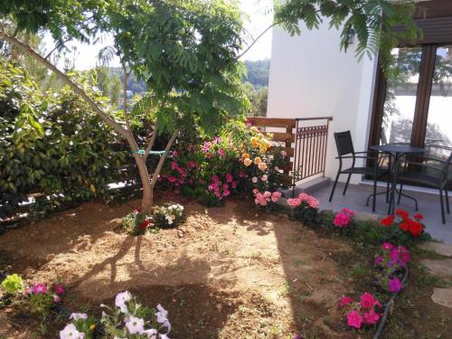 Градина пред Olivia Villas