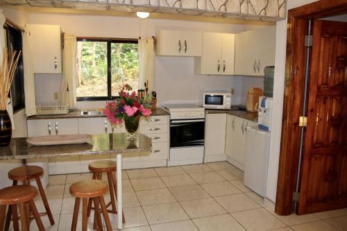 A kitchen or kitchenette at Villas Pico Bonito