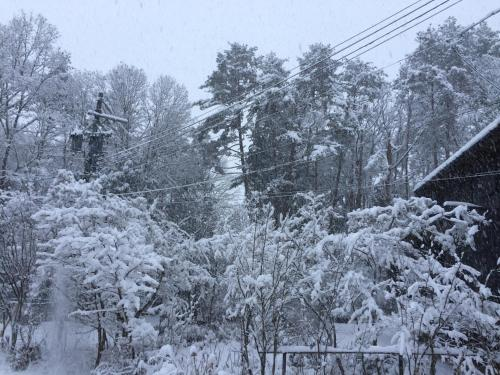 Pension Yasuda saat musim dingin