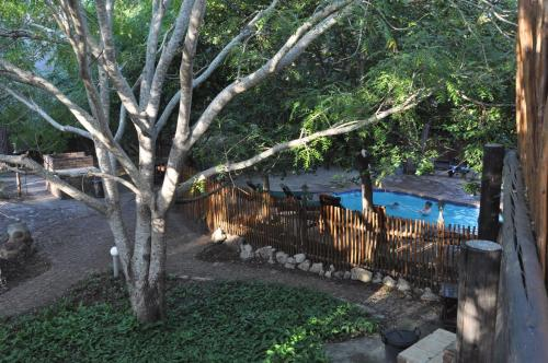 A view of the pool at Phumula Kruger Lodge and Safaris or nearby