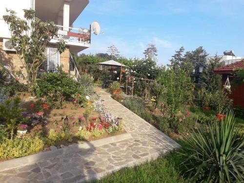 Zahrada ubytování Villa Rai