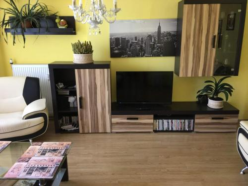 A television and/or entertainment center at Horsky apartman Medenec