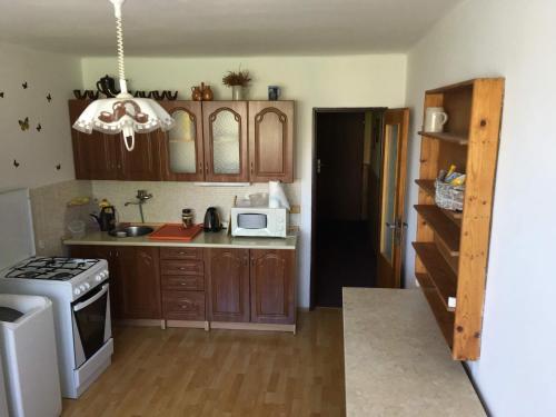A kitchen or kitchenette at Horsky apartman Medenec
