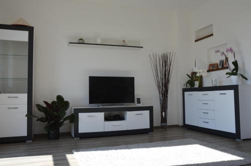 TV a/nebo společenská místnost v ubytování Vila Jenišovice Český ráj