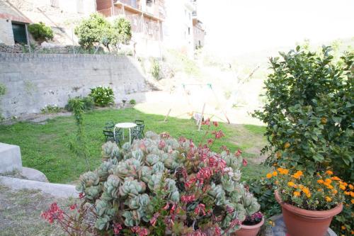 Jardín al aire libre en Hotel El Yedron