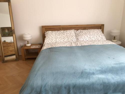 Postel nebo postele na pokoji v ubytování Vila ANA