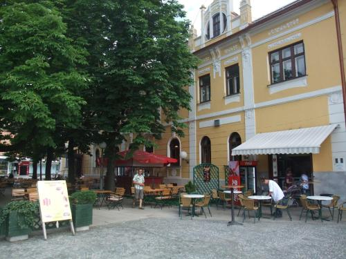 A restaurant or other place to eat at Hotel Zvezda