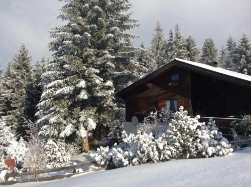 Pfänder 35 during the winter
