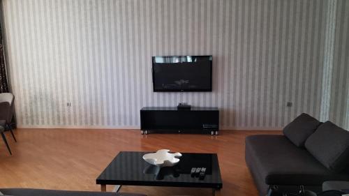 Uma TV ou centro de entretenimento em Sapphire Deluxe Apartment