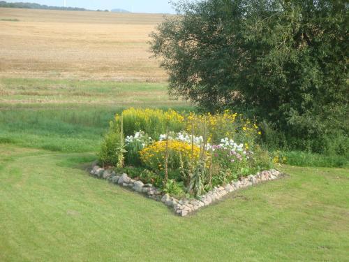 Ein Garten an der Unterkunft Haus Dornröschen