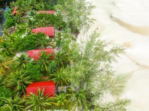 A garden outside Paradise Villas Koh Rong Sanloem
