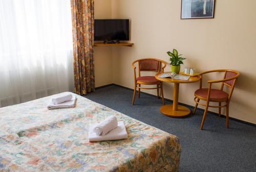 TV a/nebo společenská místnost v ubytování Hotel Dalimil