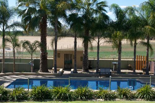 The swimming pool at or near Tokemata Retreat