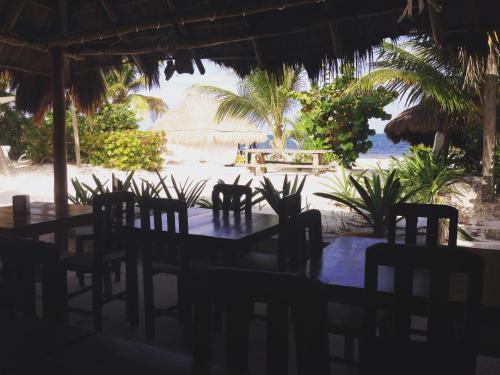 Ресторан / где поесть в Acamaya Reef Cabañas