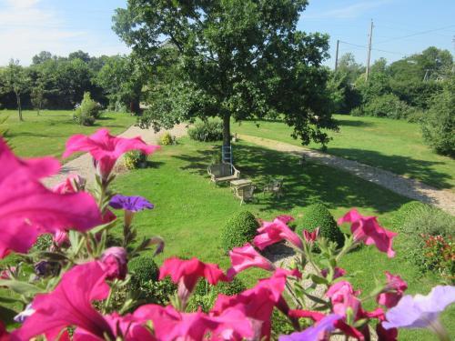 A garden outside Le Clos Lauradière