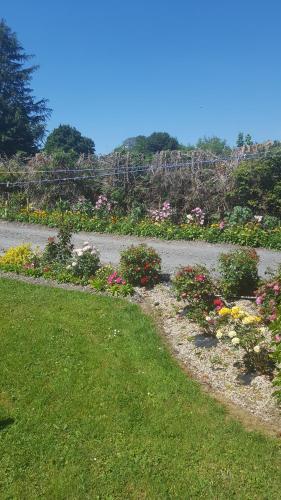 A garden outside Tulla Villa Self Catering