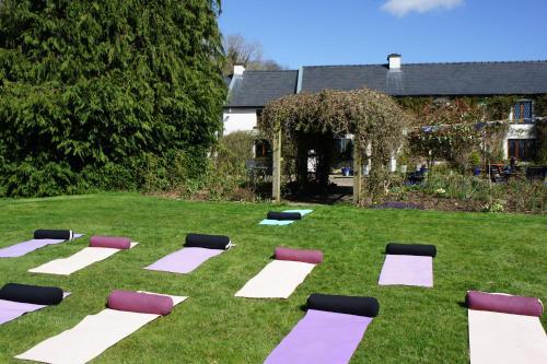 A garden outside Creacon Wellness Retreat