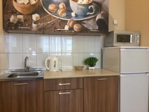 A kitchen or kitchenette at Apartment Irk
