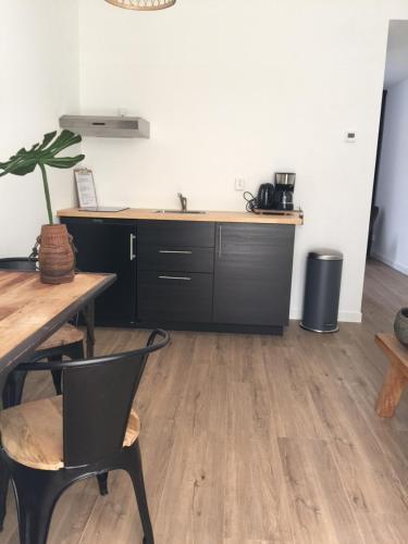 Een keuken of kitchenette bij appartementen zeespiegel