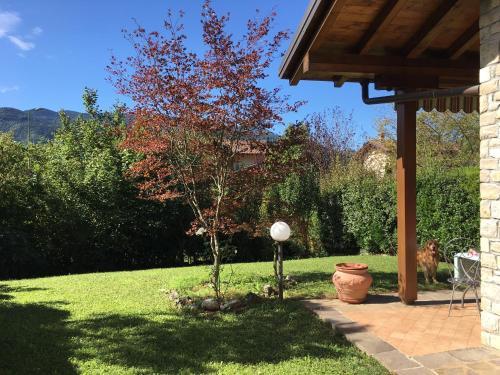 A garden outside Falecchio home