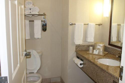 A bathroom at Holiday Inn Express Hotel & Suites New Iberia - Avery Island